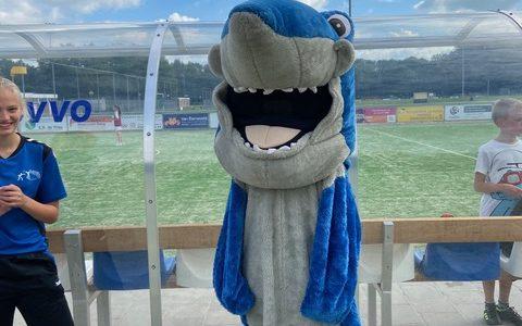 Sharky toernooi groot success!